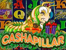 Cashapillar играть на деньги в клубе Эльдорадо